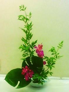Iさんの基本花型