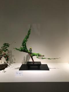 20151010小林美智子 日本いけばな芸術展.JPG